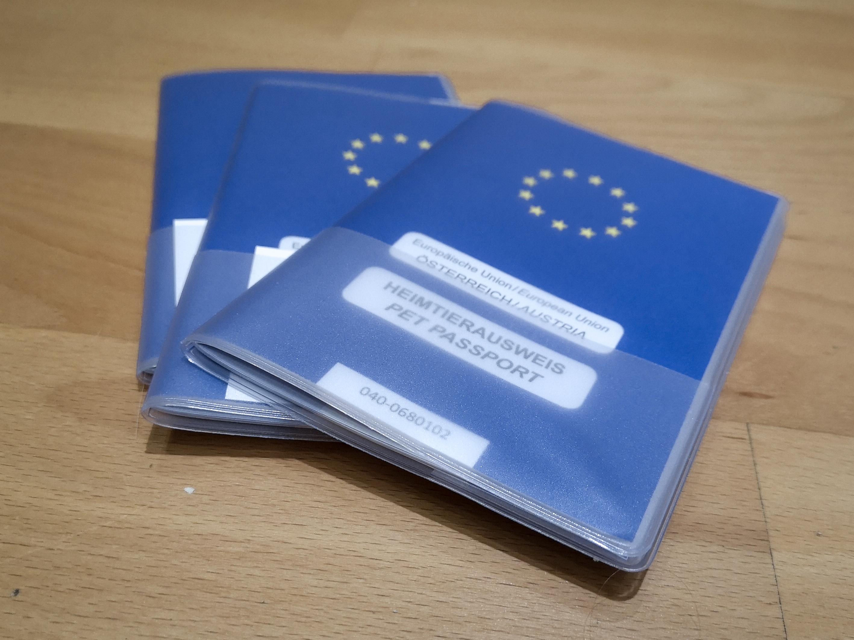 EU-lemmikkipassin hommaaminen oli aika simppeli projekti, ainakin meille.
