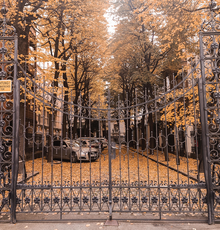 Tämänhetkinen tilanne, kun Wienissä syksy on kauneimmillaan. Tosin kuvaa on käsitelty LOOVin Autumn-presetein.