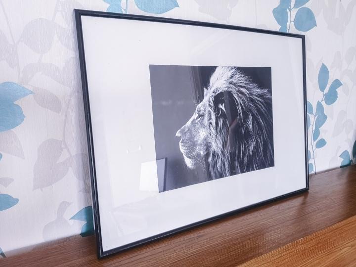 Tämä leijonataulu haettiin samalla reissulla kuin aiemmin näkynyt pikkutaulukin. Hintaa neljä euroa.
